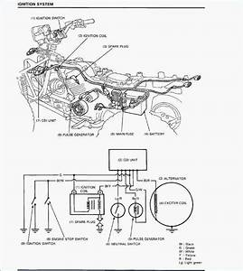 Yamaha 660 Wiring Diagram