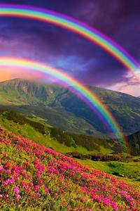 I think real rainbows are beautiful and wondrous. I think ...