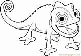 Chameleon Pascal Coloring Tangled Pages Coloringpages101 sketch template