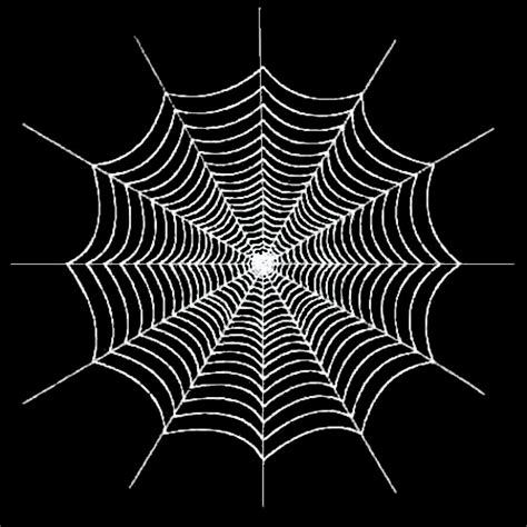 clipart web realistic clipart spider web pencil and in color