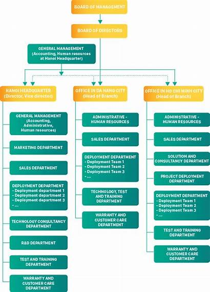Organizational Chart Bravo Introdution