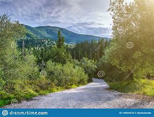 Beautiful, Summer, Panoramic, Landscape, Cypress, Hills, And