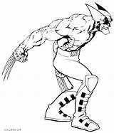 Coloring Pages Wolverine Muscle Muscles Printable Anatomy Cool2bkids Lego Colouring Avengers Cartoon Comics Getcolorings Sheet Animal Print Drawing Clipartmag Getdrawings sketch template