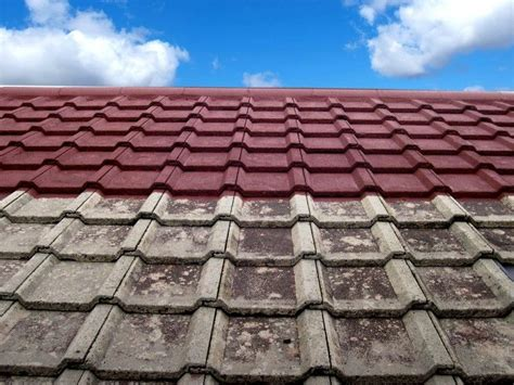 roof tile paint roof painting