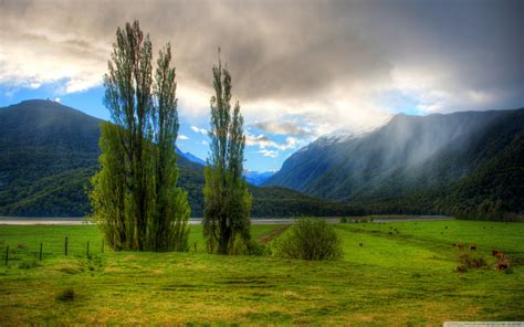 Wallpaper Landscape by Landscape In New Zealand 4k Hd Desktop Wallpaper For 4k