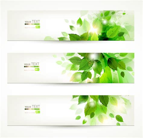 green leaf banner  vector graphic