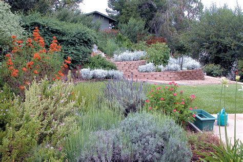 landscape design california pacific horticulture society landscaping with natives in san diego