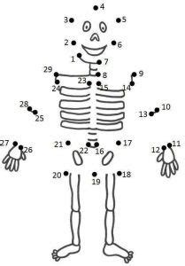 easy dot  dot worksheets  images body preschool