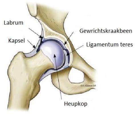 Pijn in alle gewrichten en spieren