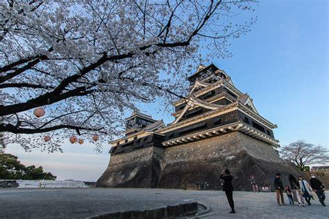Raina's Japan Travel Journal Kumamoto Cherry Blossom Report
