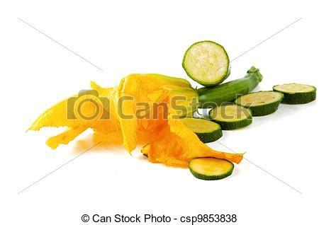 kürbis bilder bilder suppe blume zucchini k 227 188 rbis k 227 188 rbis blume mit csp9853838 suchen sie