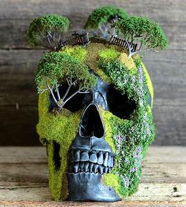 These Unique Bonsai Skulls Are Fascinating and Creepy   So ...