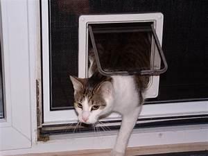 Türschutzgitter Mit Katzenklappe : katzen hundeklappen f r fliegengitter ~ Whattoseeinmadrid.com Haus und Dekorationen