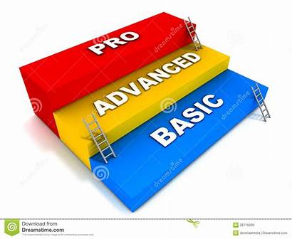 Basic Levels Advanced Pro Support Professional Expertise