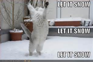 Image result for Lots of Cute Pictures of Snow
