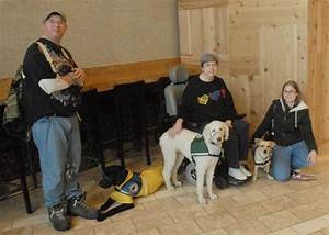 how service dogs increase independent living service dog With local dog training classes