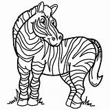 Coloring Zebra Sheets Animal Town sketch template