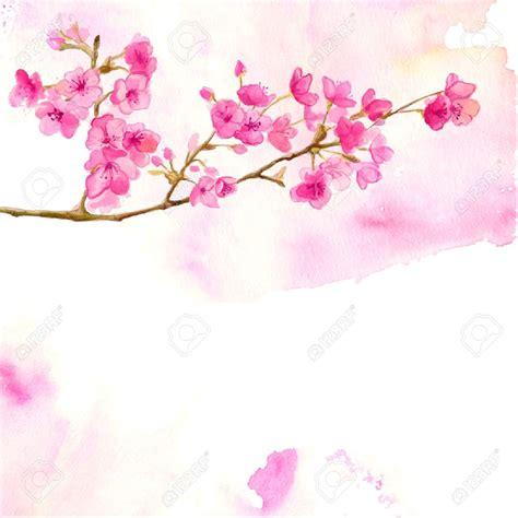 Fondo rosado con rama de flor de cerezo Vector