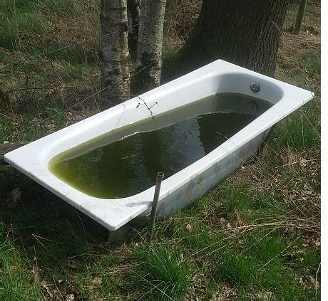 Wo Und Wie Entsorgt Man Eine Badewanne?