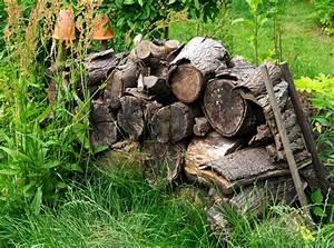 Spitzmäuse Im Garten : totholz artenreicher lebensraum ~ Lizthompson.info Haus und Dekorationen
