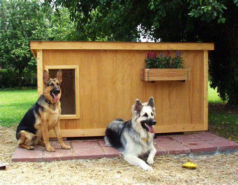 dog houses  dog house plans fun animals wiki