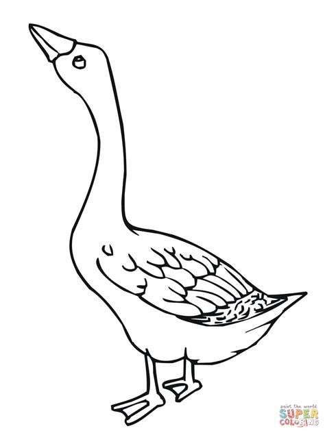 Coloring Pictures For by Baby Goose Coloring Page Coloring Home