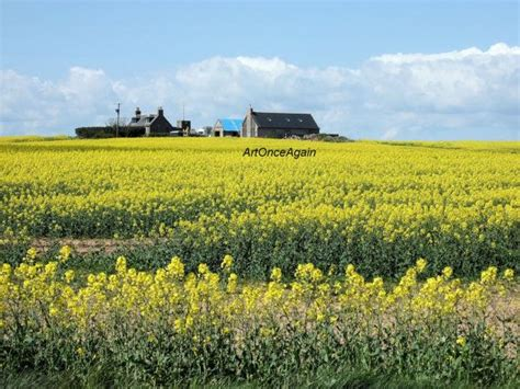 86 Best Countryside Landscape Images On Pinterest