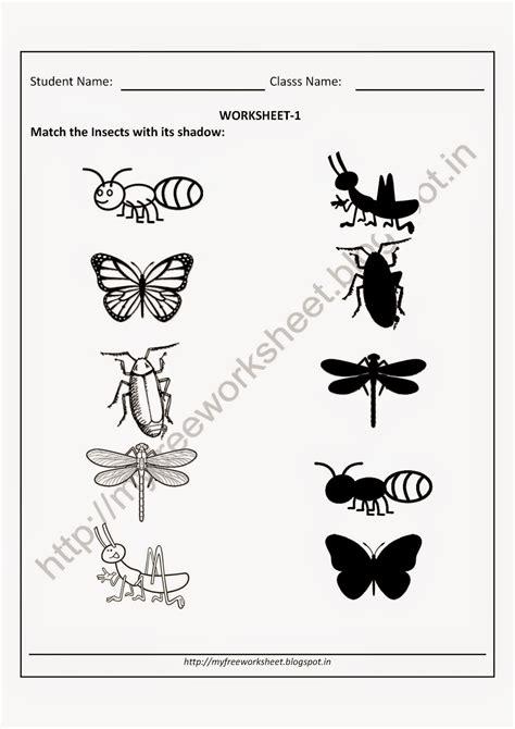 Kindergarten Science Worksheets Chapter #1 Worksheet Mogenk Paper Works