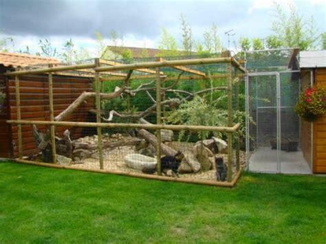 cage pour chat exterieur les 25 meilleures id 233 es concernant enclos pour chat sur enclos pour chat en plein