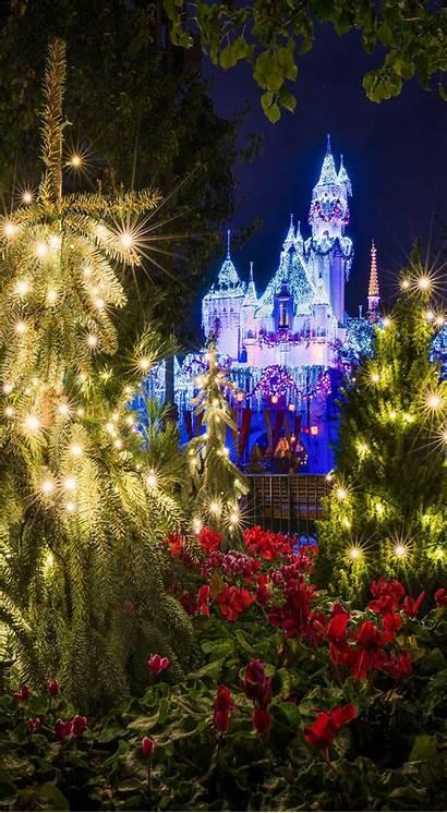 Phone Iphone Christmas Disneyland Disney Wallpapers Backgrounds