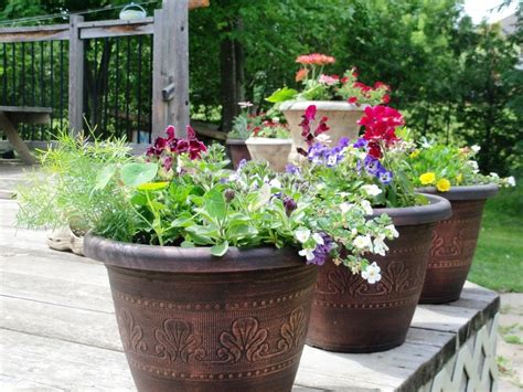 cheap medium sized beds planters extraordinary large outdoor flower pots big pots
