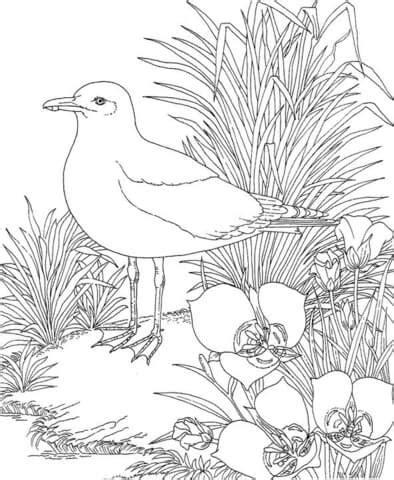 seagull   garden coloring page supercoloringcom
