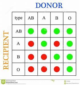 Bloedgroepen doneren