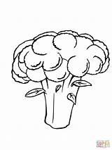 Cauliflower Coloring Pages Drawing Vegetables Printable Getdrawings sketch template