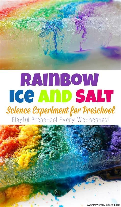 17 best ideas about preschool science experiments on 711 | 431219368c38df892977fc2a243a1ca1