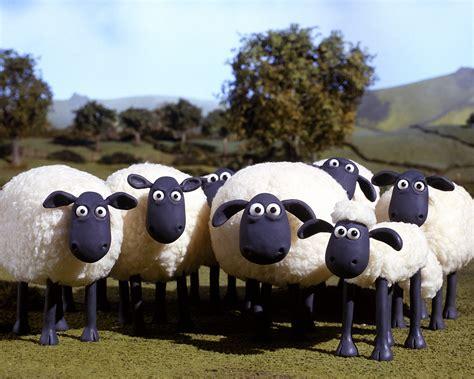 The Flock Shaun The Sheep Wiki Fandom Powered By Wikia
