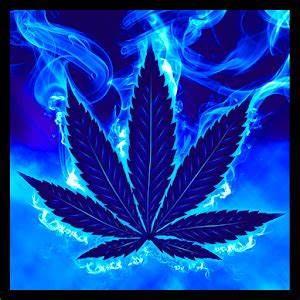 Blue Weed Rasta Keyboard Android Apps on Google Play