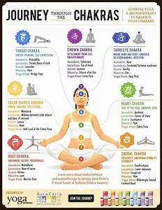Young Living Essential Oils: Body Chakras | oils ...