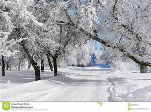 Winter scenery stock image. Image of cold, blue, snow ...