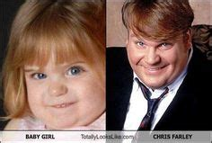 Chris Farley Reincarnation Meme - lookalikes on pinterest look alike celebrities and dog humor