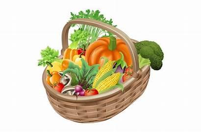 Vegetables Clip Vegetable Basket Clipart Fruit Fruits