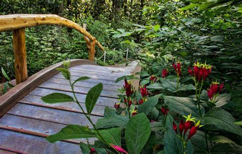 gardening picture blomquist garden duke gardens