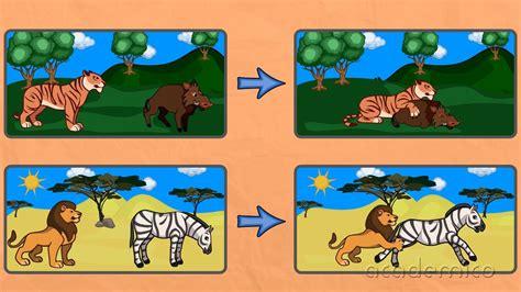Хранене на животните - Човекът и природата 4 клас ...