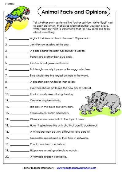fact and opinion worksheet homeschooldressage