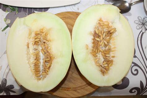 honigmelone schneiden anleitung honigmelone in zimt ingwer schmand creme shizzle2013