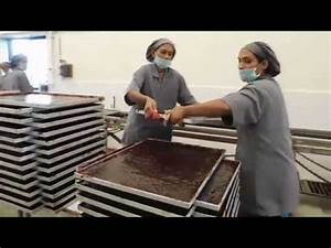 Chocolate Factory in India | Inside View | How Chocolates ...
