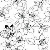 Cherry Blossom Coloring Pages Tree Japanese Colouring Lovely Printable Getcolorings Sheets Blosso Getdrawings sketch template