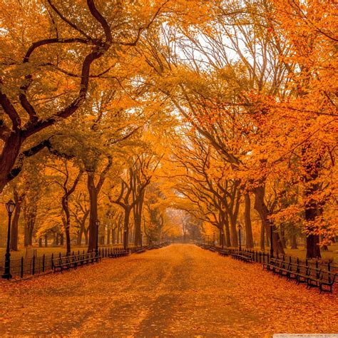 Beautiful Autumn Landscapes Wallpapers by Autumn Landscape Wallpaper 69 Images
