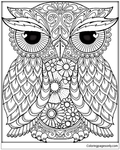 mandala owl coloring page  coloring pages
