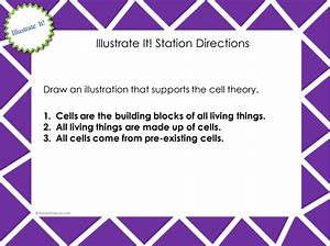 Cell Theory Timeline And Worksheet Answer Key